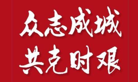"""与武汉疫情""""擦肩而过""""的峰会"""